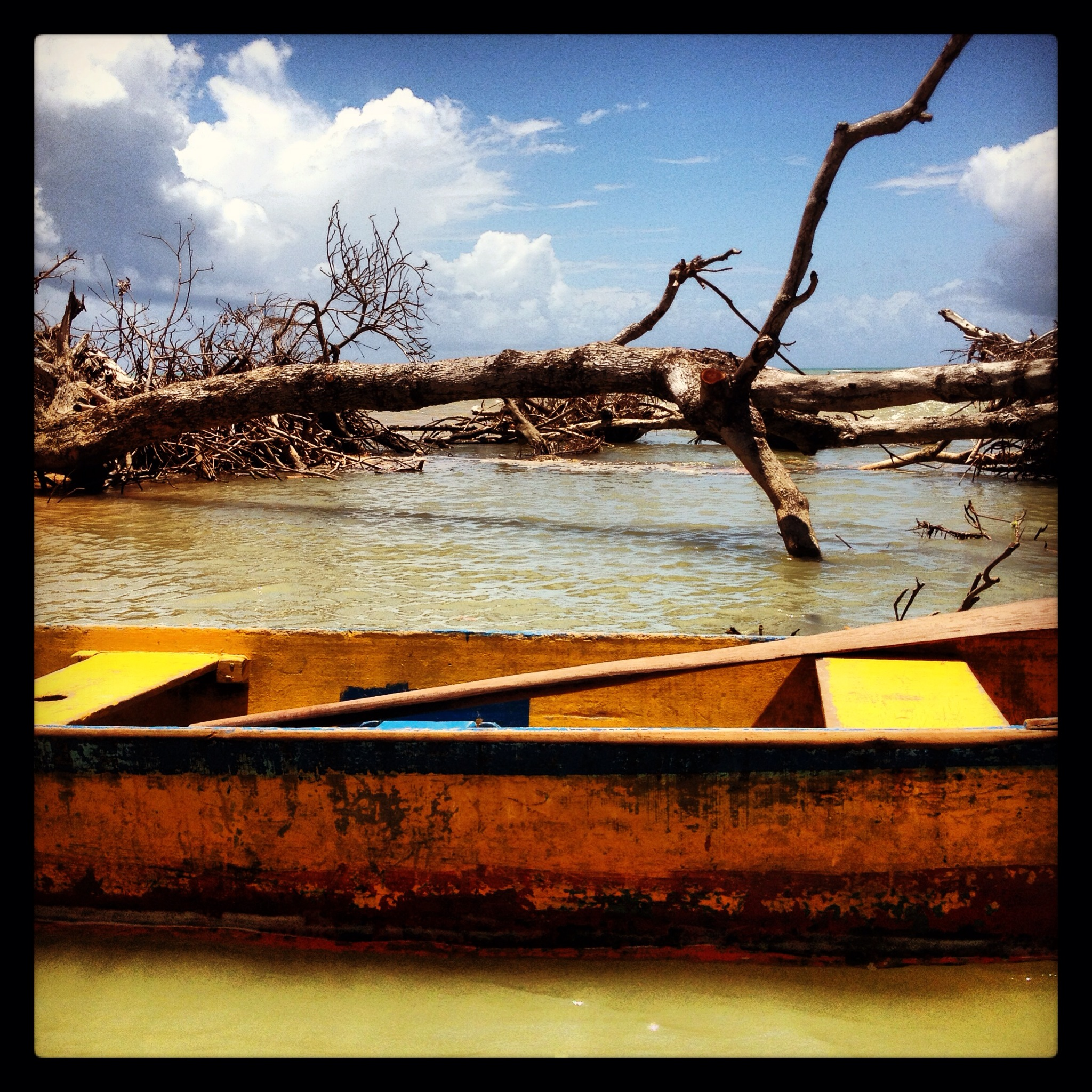 canoa